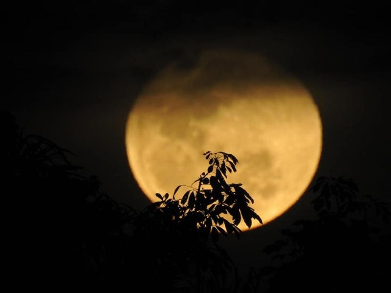 A super lua de Belterra (PA)