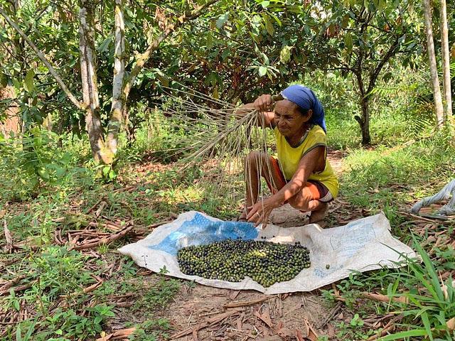 Maria Conceição é da 5ª geração do quilombo, filha de pai negro e mãe índia, ela diz que o igarapé da comunidade a ajudou a criar os filhos / Foto: Catarina Barbosa/Brasil de Fato