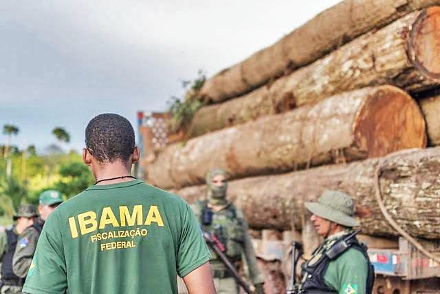 Multas ambientais aplicadas no Brasil desde outubro não foram cobradas